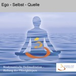 Ego-Selbst-Quelle