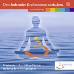 Cover Loderndes Kraftzentrum1