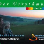 Der Urrythmus des Lebens – Der Primäre Atem